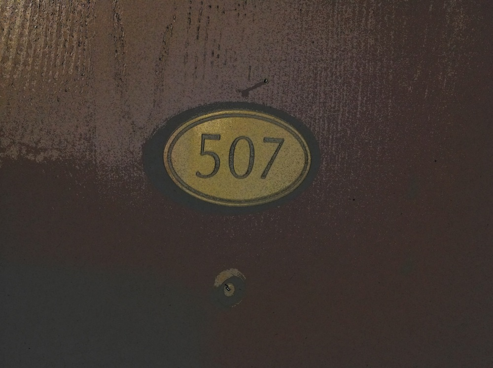 This is the door to my apartment. 507. Sometimes I wonder when I shut the door if another entity identical to myself takes over and lives his life in there. What if I open the door suddenly and see myself sitting at my table drinking a coffee working on my computer? What then? Best to move on . . .