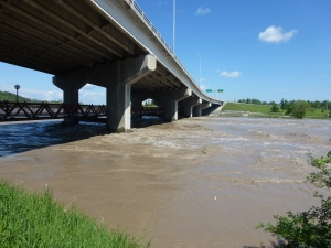 The Bow River Under Crowchild Trail just west of dowtown.